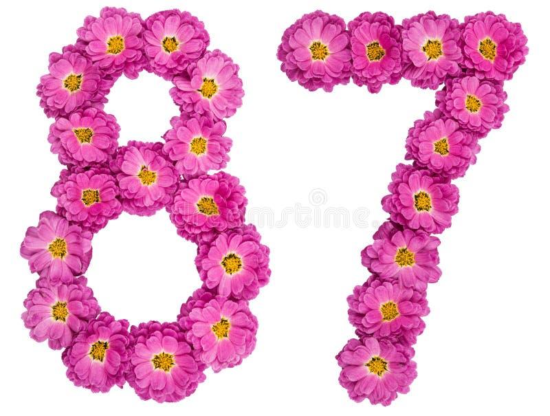 Arabski liczebnik 87, osiemdziesiąt siedem, od kwiatów chryzantema, zdjęcia royalty free