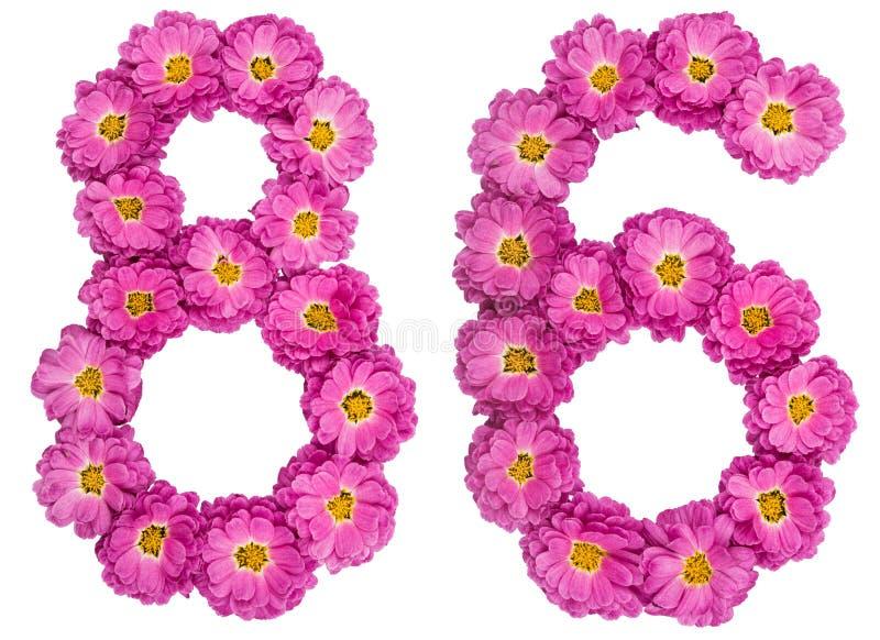Arabski liczebnik 86, osiemdziesiąt sześć, od kwiatów chryzantema, jest obraz stock