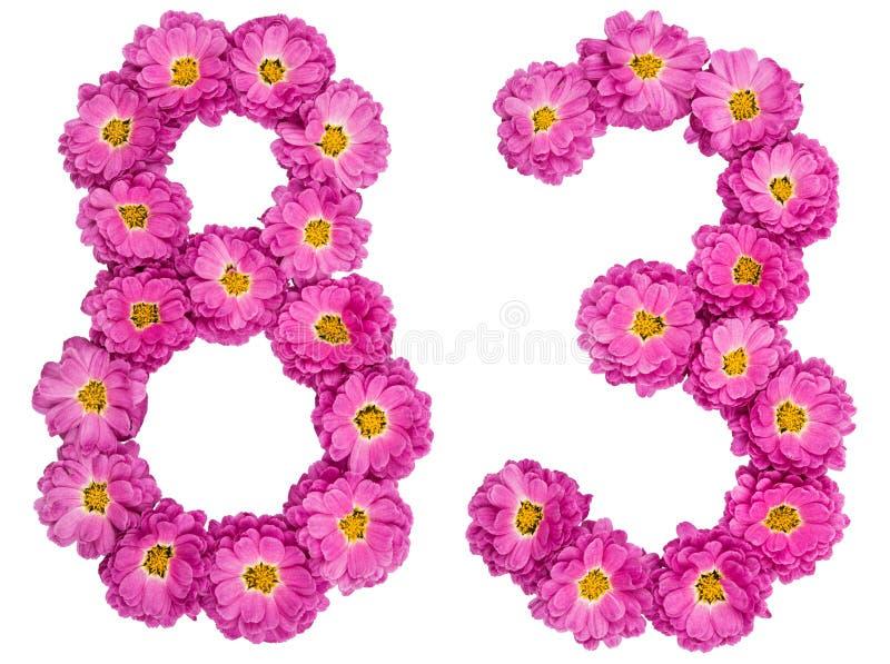 Arabski liczebnik 83, osiemdziesiąt trzy, od kwiatów chryzantema, obraz stock