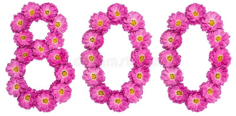 Arabski liczebnik 800, osiemset, od kwiatów chryzantema zdjęcie royalty free