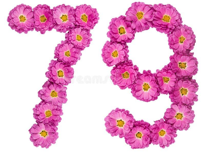 Arabski liczebnik 79, siedemdziesiąt dziewięć, od kwiatów chryzantema, zdjęcie stock