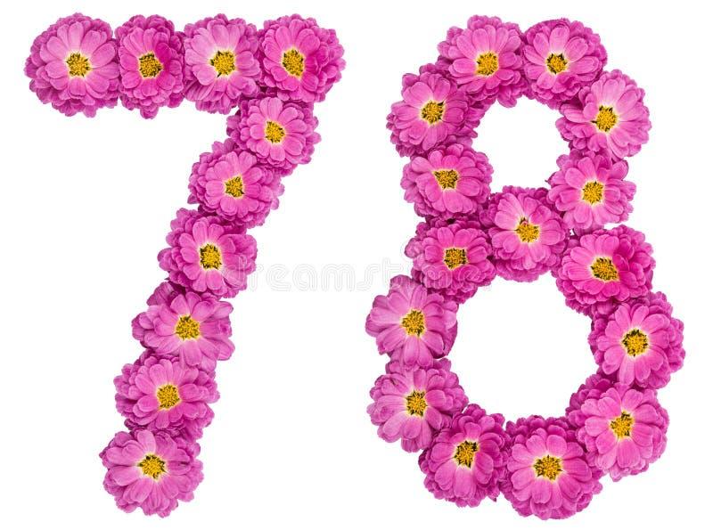 Arabski liczebnik 78, siedemdziesiąt osiem, od kwiatów chryzantema, obrazy stock