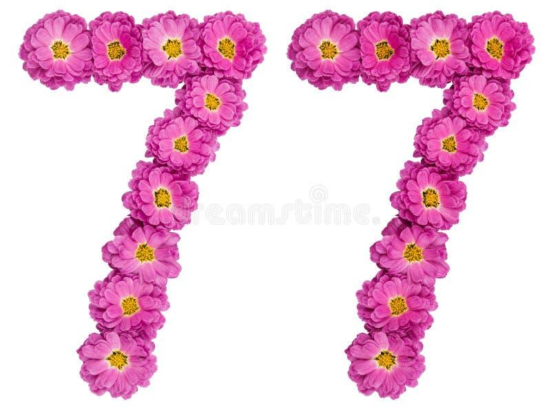 Arabski liczebnik 77, siedemdziesiąt siedem, od kwiatów chryzantema, fotografia stock