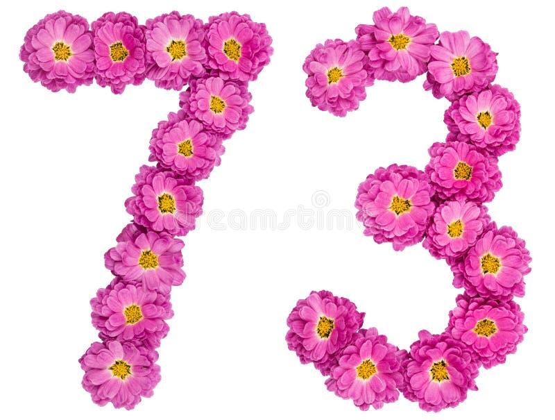 Arabski liczebnik 73, siedemdziesiąt trzy, od kwiatów chryzantema, zdjęcie stock