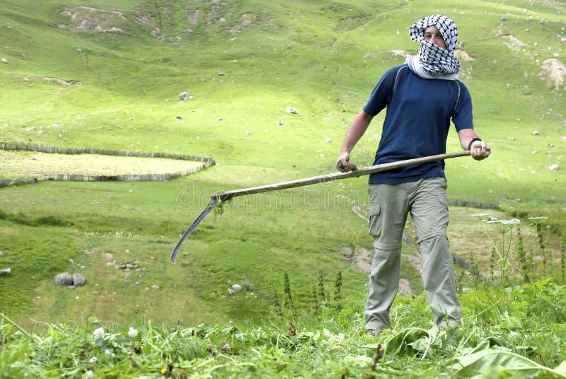Arabski mężczyzna pracuje w polu obraz royalty free