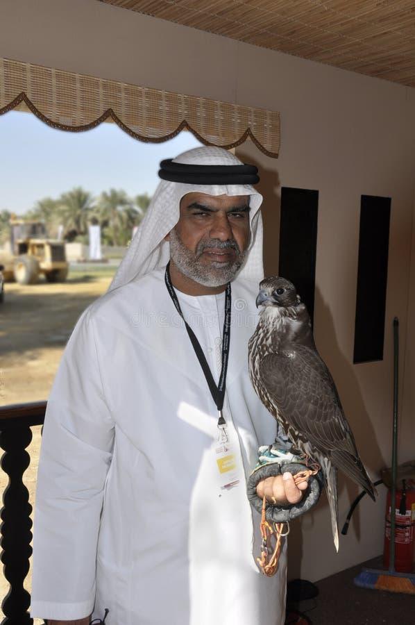 Arabski sokolnik zdjęcia stock