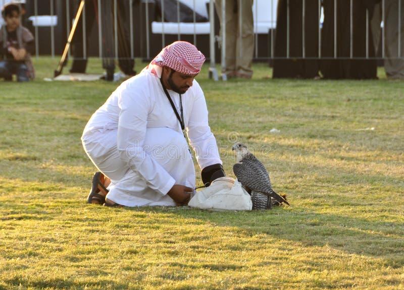 Arabski sokolnik fotografia stock