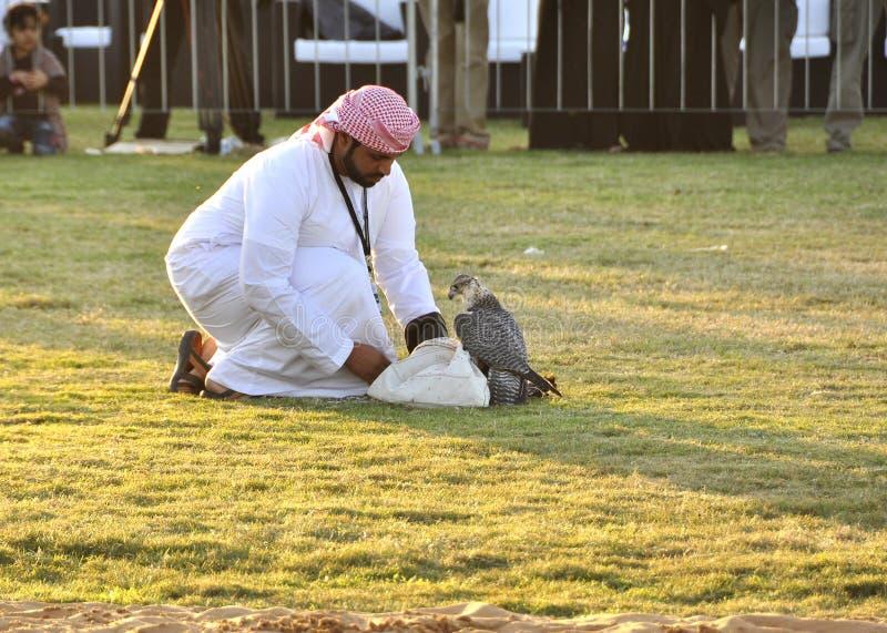 Arabski sokolnik obraz royalty free