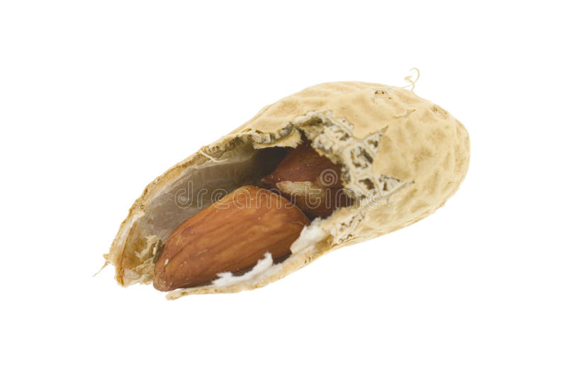 Arachide photos stock