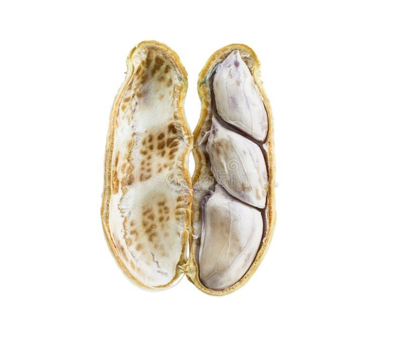 Arachides bouillies sur le fond blanc photo stock