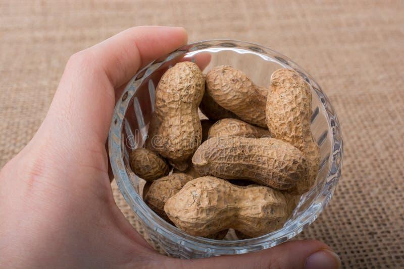 Download Arachides Dans Un Plat Sur La Toile Photo stock - Image du végétarien, ingrédient: 87702470