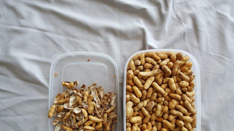 Arachides et coquilles sèches dans la boîte photo libre de droits