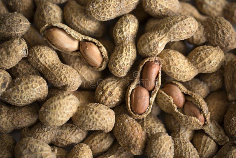 Arachides ou arachide salées image stock