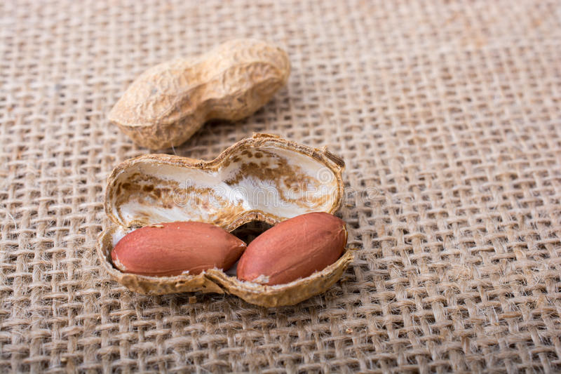 Download Arachides Ouvertes Criquées Avec La Coquille Sur Une Toile De Toile Photo stock - Image du végétarien, sain: 87709130