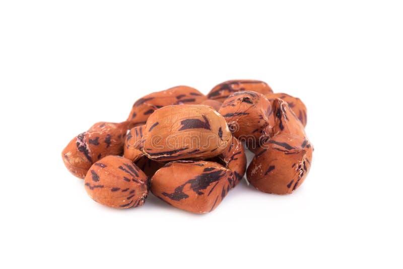 arachidi arrostite della tigre su fondo bianco immagini stock libere da diritti