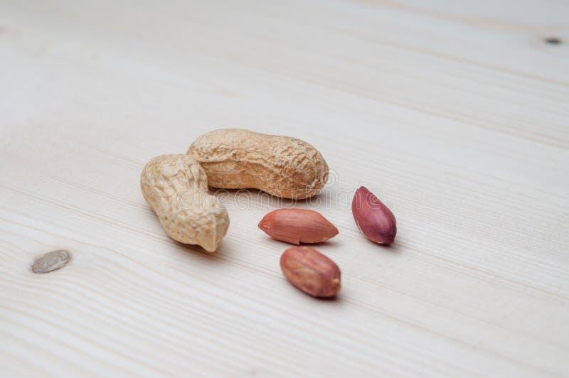arachidy zgłaszają drewnianego zdjęcia royalty free