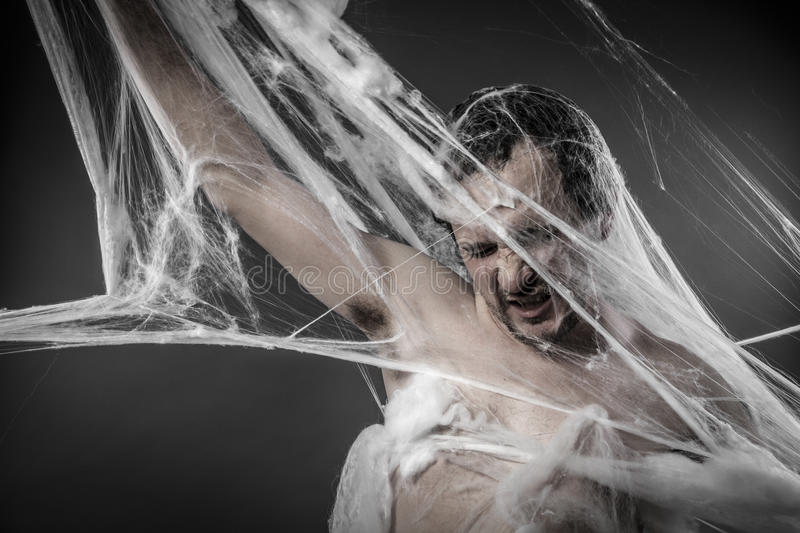 Download Arachnid.man Tangled In Huge White Spider Web Royalty Free Stock Images - Image: 37742329