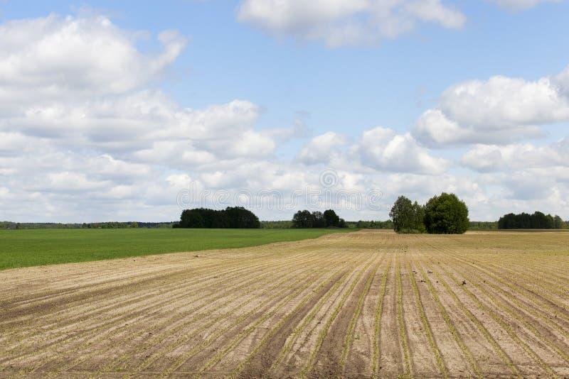 Arado para la tierra de la cosecha imagenes de archivo