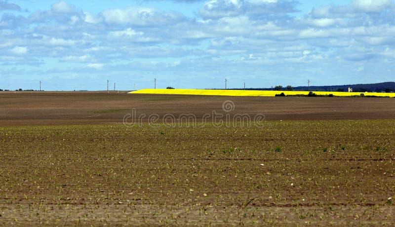 Arado para la tierra de la cosecha fotografía de archivo