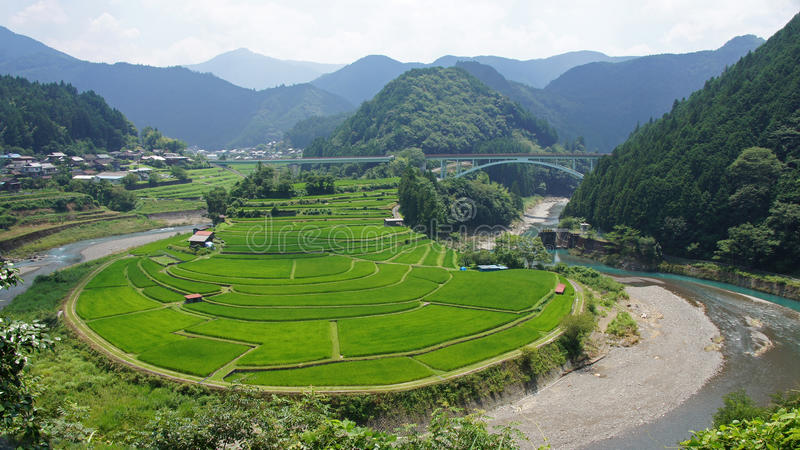 Aragijima Terrasvormig Padieveld in Wakayama, Japan royalty-vrije stock fotografie