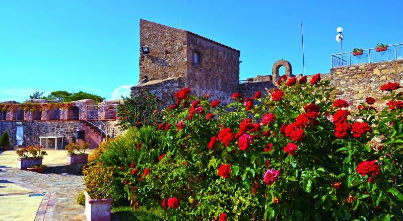 Aragonese slott av Agropoli arkivfoton