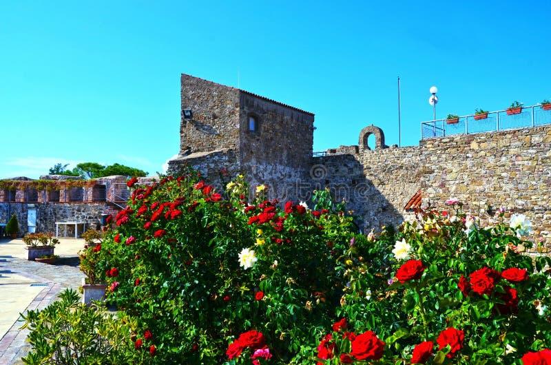 Aragonese slott av Agropoli royaltyfria bilder