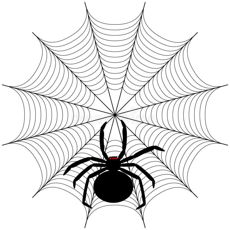 Araignée illustration de vecteur