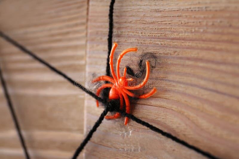Araignée avec le Web comme décor pour la partie de Halloween sur le mur en bois photos stock