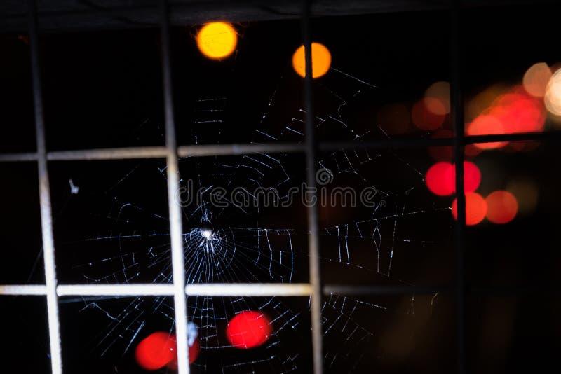 Araignée de noir foncé en Web avec l'autoroute finie images libres de droits