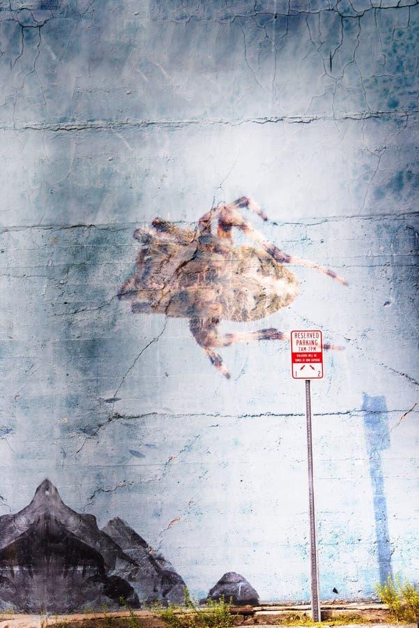 Araignée géante sur un mur à Portsmouth New Hampshire photo stock