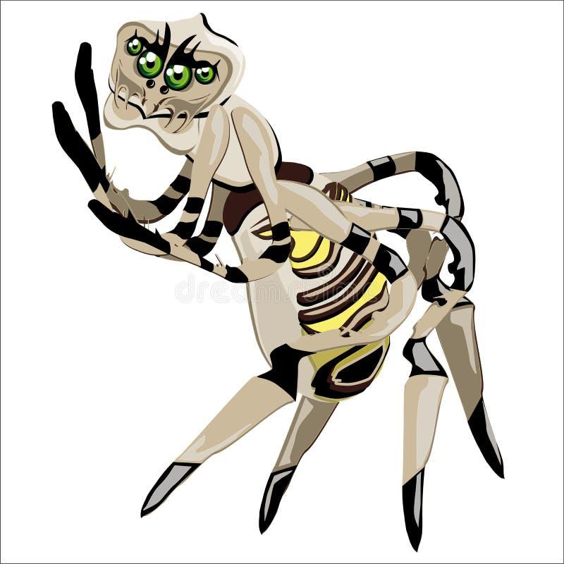 Araignée noire et blanche illustration stock