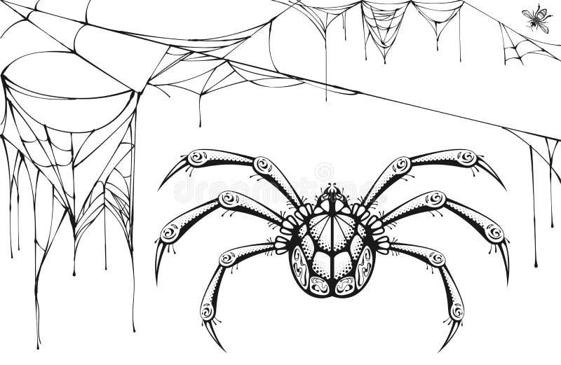 Araignée noire et blanche effrayante et Web déchiré Symboles et accessoires de Halloween illustration stock