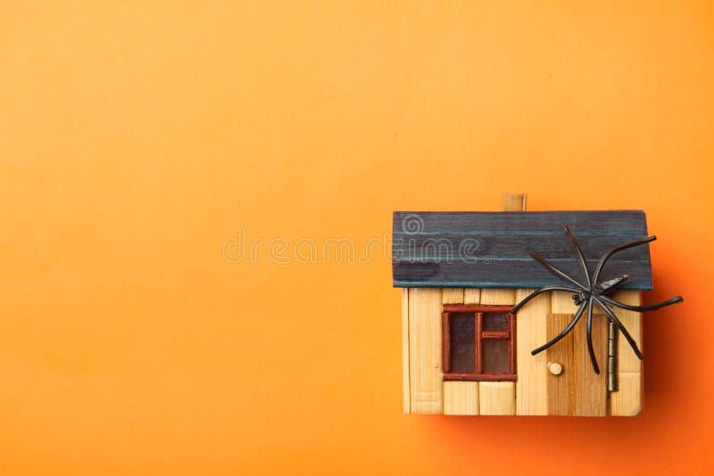 Araignée sur la maison en bois images libres de droits