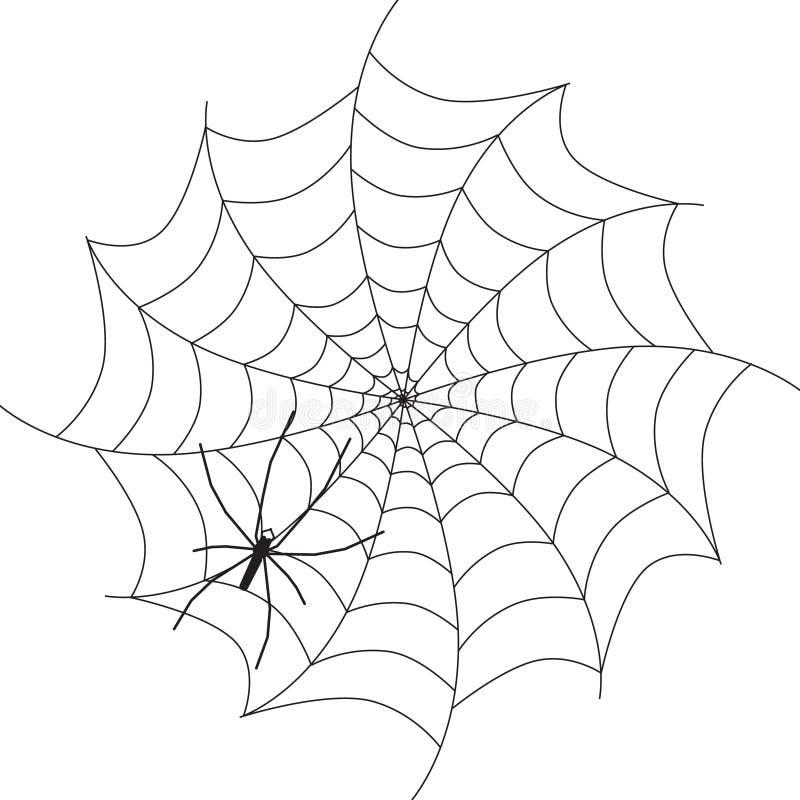 Araignée sur le Web La silhouette animale de noir de vecteur a isolé illustration libre de droits