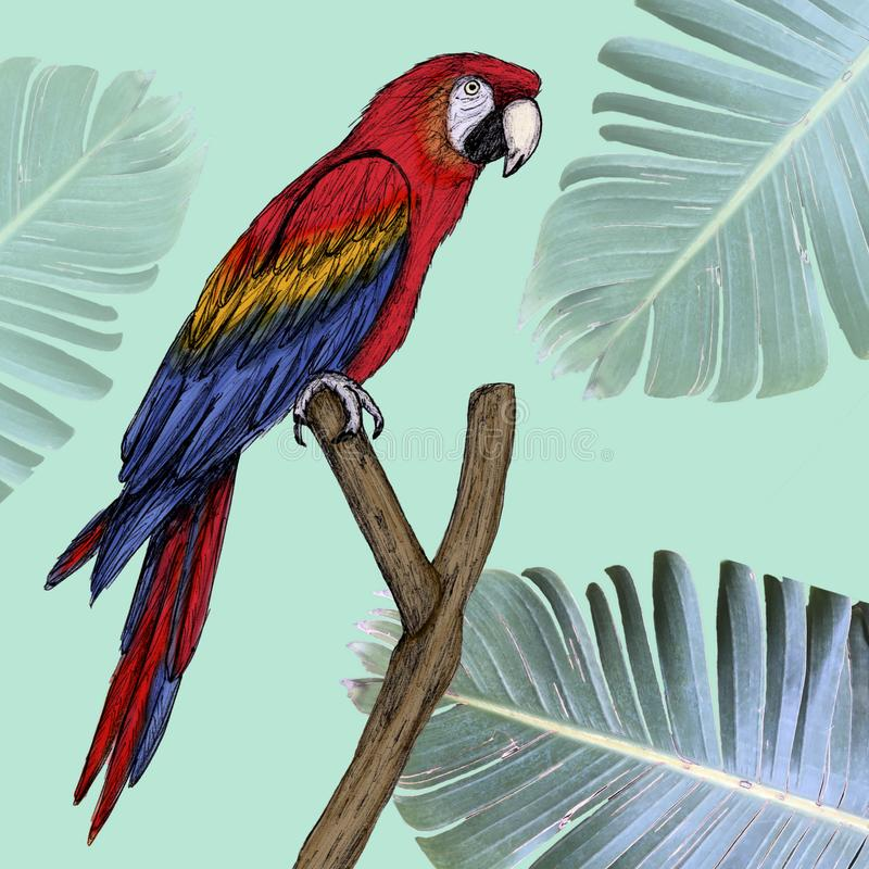 Araillustration som dras i penna med digital färg stock illustrationer