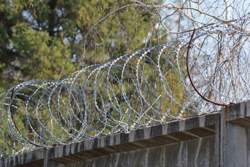 Arame farpado de aço em uma cerca concreta cinzenta na perspectiva dos ramos de árvore imagem de stock royalty free