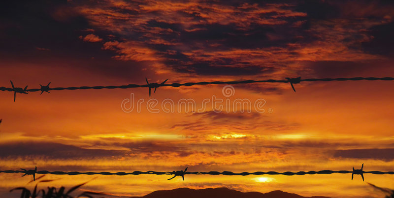 Arame farpado no por do sol vermelho imagem de stock royalty free