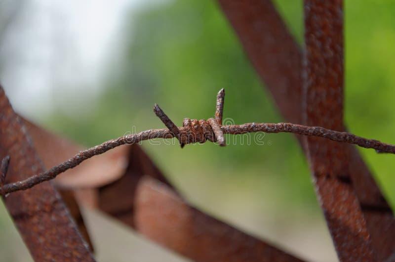 Arame farpado oxidado imagem de stock