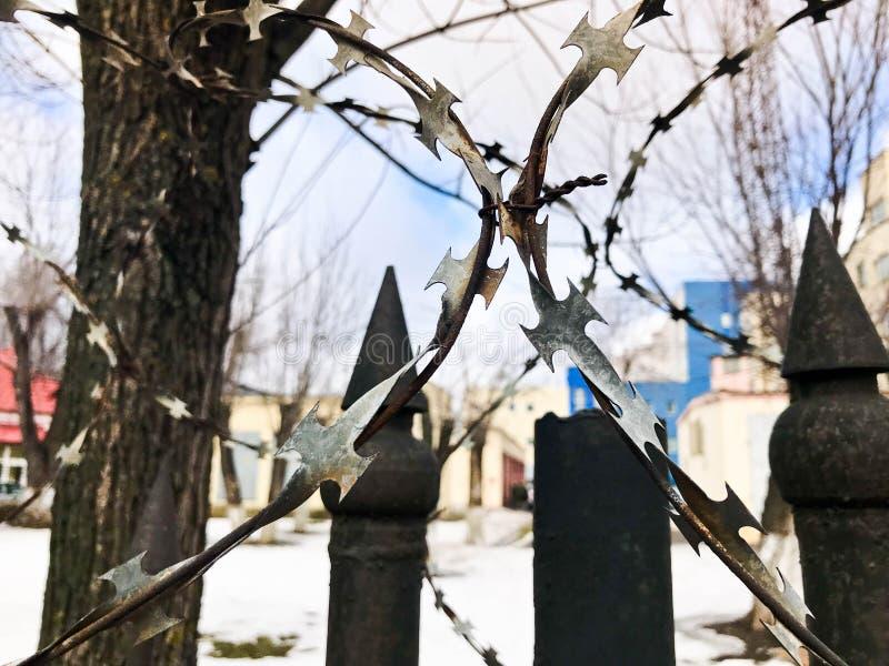 Arame farpado protetor perigoso afiado do metal do ferro na cerca com pontos e estacas contra o céu imagem de stock royalty free