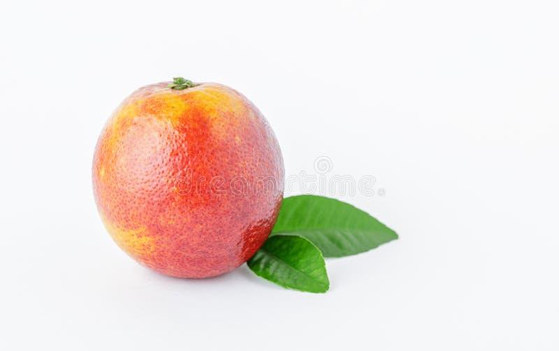 Aranci isolati Arance rosse mature fresche su fondo bianco Fondo arancio sano di frutti fotografie stock libere da diritti