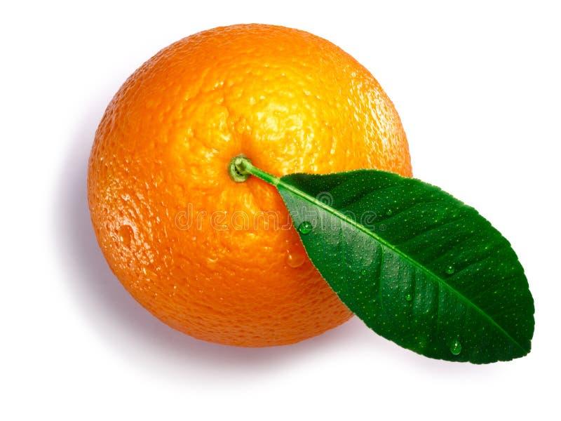 Arancia con la foglia, percorsi, vista superiore fotografia stock libera da diritti