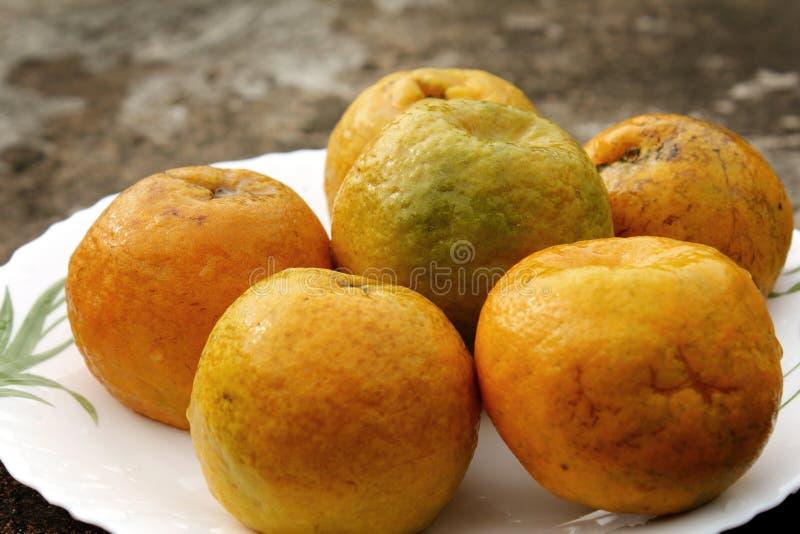 Arancia con sfuocatura fotografie stock
