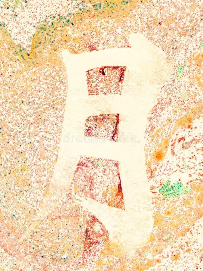 Arancia del fondo del marmo della luna del carattere cinese illustrazione vettoriale