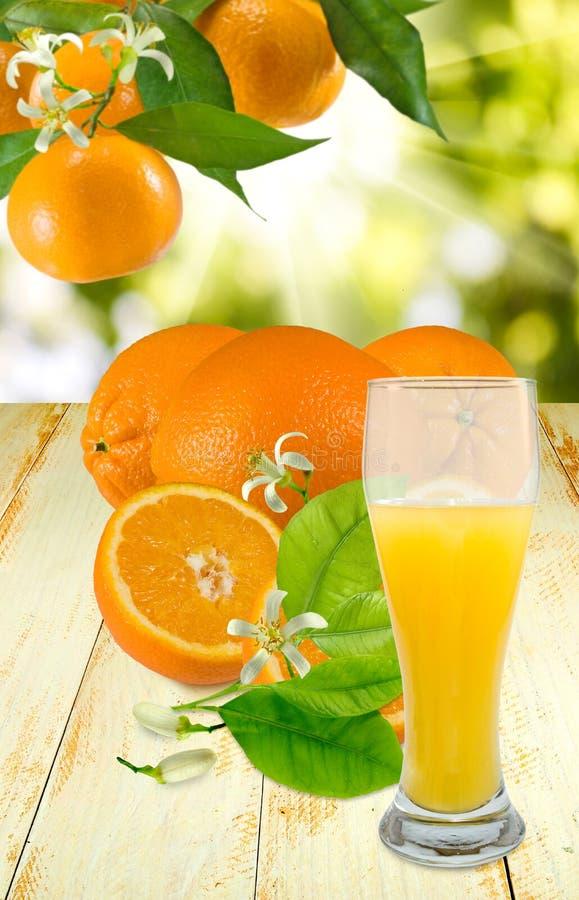 Download Arancia E Succo Su Un Fondo Verde Fotografia Stock - Immagine di arancione, disegno: 56882500