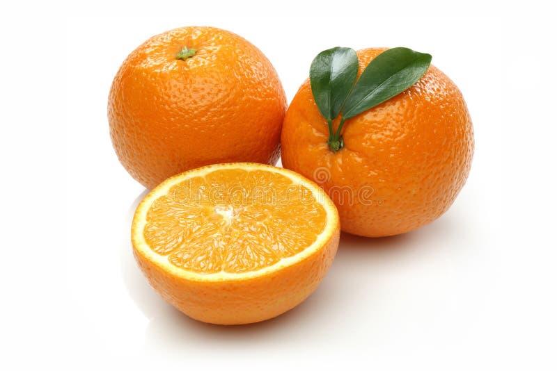 Arancia ed a metà arancio freschi fotografie stock libere da diritti