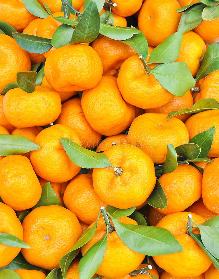 Arancio. fotografia stock