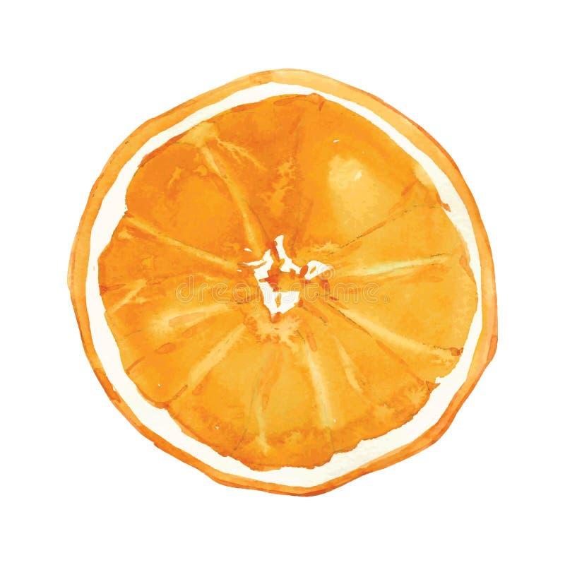 Arancio royalty illustrazione gratis