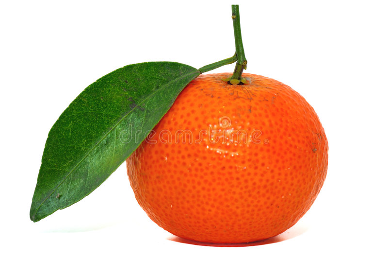 Arancio cinese fotografia stock