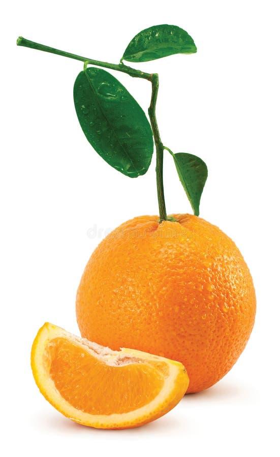 Arancio con i fogli ed i tubuli fotografia stock