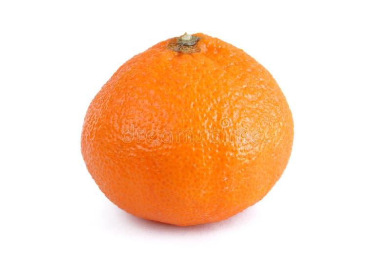 Arancio della clementina - mandarino fotografia stock